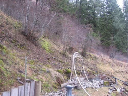 We started landscaping our way up the mountain last fall.