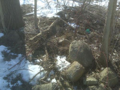 Rock Garden BEFORE 3