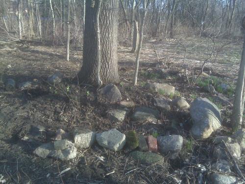 Rock Garden DURING 1