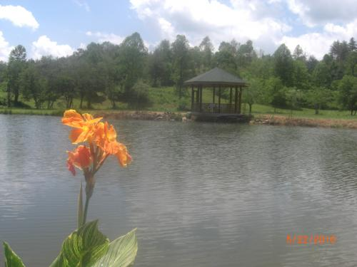 view of gazebo from across the pond