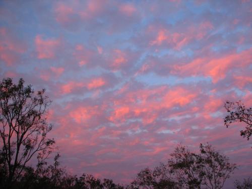 Sunset in Springtime