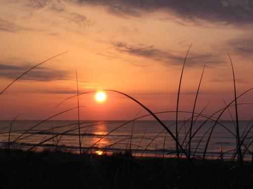 Sunrise on Sapelo